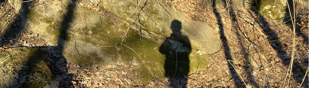 Photo of a person's shadow falling on a large flat rock in the woods