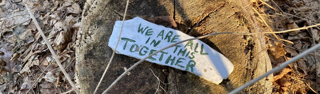 "Photo of a stone sitting on a stump. The stone has the text ""we are all in this together"" painted on it."